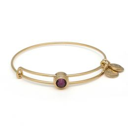 Alex and Ani Amethyst Spirituality Sacred Studs Bangle