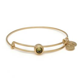 Alex and Ani Khaki Healing Sacred Studs Bangle