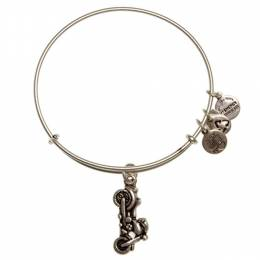 Alex and Ani Motorcycle Charm Bangle