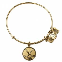 Alex and Ani Team USA Ice Hockey Charm Bangle