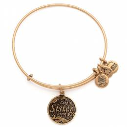 Alex and Ani Like A Sister Charm Bangle Bracelet