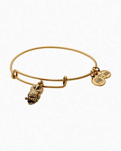 Ode to the Owl Charm Bangle | Roger Williams Park Zoo
