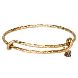 Alex and Ani Spacious Skies Expandable Wire Bangle