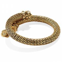 Alex and Ani Rafaellan Gold Gift Of Wisdom Wrap