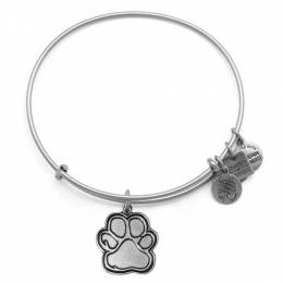 Alex and Ani Prints Of Love Charm Bangle