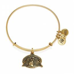 Alex and Ani Guardian Of Healing Charm Bangle