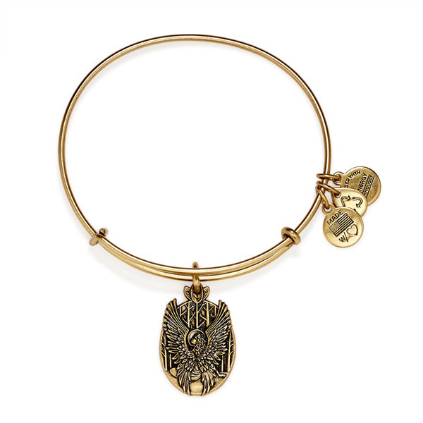 Alex and Ani Guardian Of Love Charm Bangle in Rafaelian Gold Finish