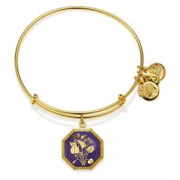 Alex and Ani Seduced By Innocence Violet Charm Bangle