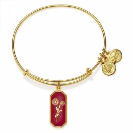 Alex and Ani Medieval Blessing Marigold Charm Bangle