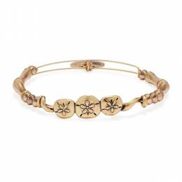 Alex and Ani Sand Dollar Horizontal Bangle