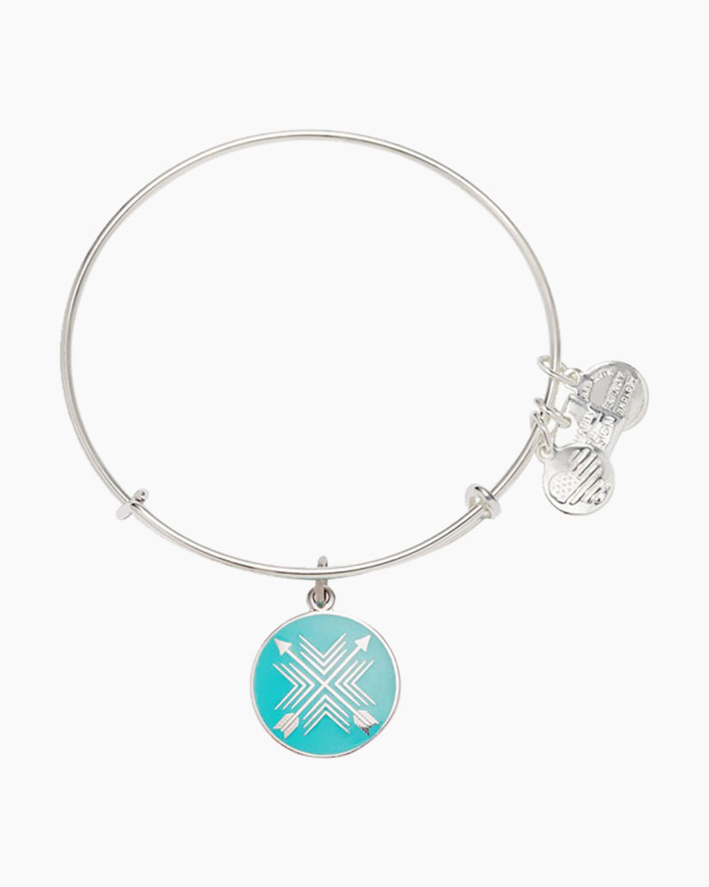 alex and ani arrows of friendship charm bangle the paper