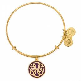 Alex and Ani Cabernet PATH OF LIFE Charm Bangle
