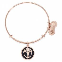 Alex and Ani Charcoal Unexpected Miracles Charm Bangle