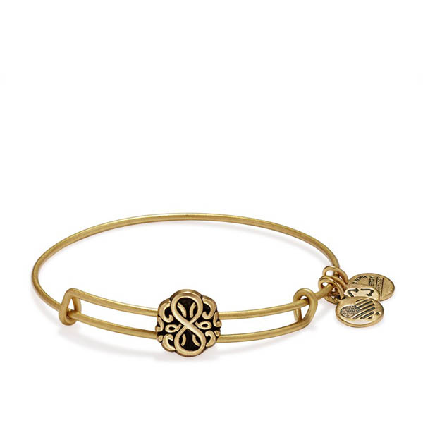 Alex and Ani PATH OF LIFE Slider Charm Bangle in Rafaelian Gold Finish