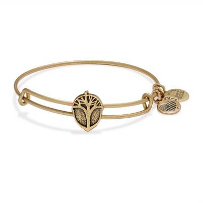 Unexpected Miracles Slider Charm Bangle