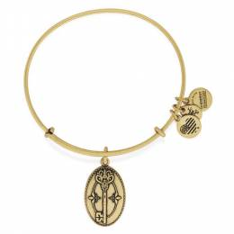 Alex and Ani Key to Life Expandable Charm Bangle