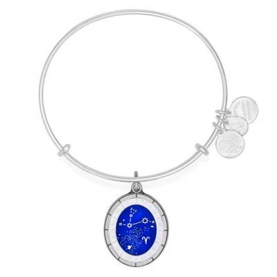 Aries Celestial Wheel Charm Bangle