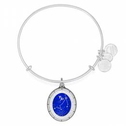 Alex and Ani Capricorn Celestial Wheel Charm Bangle