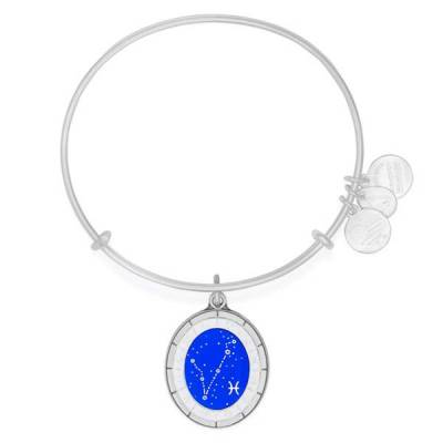 Pisces Celestial Wheel Charm Bangle