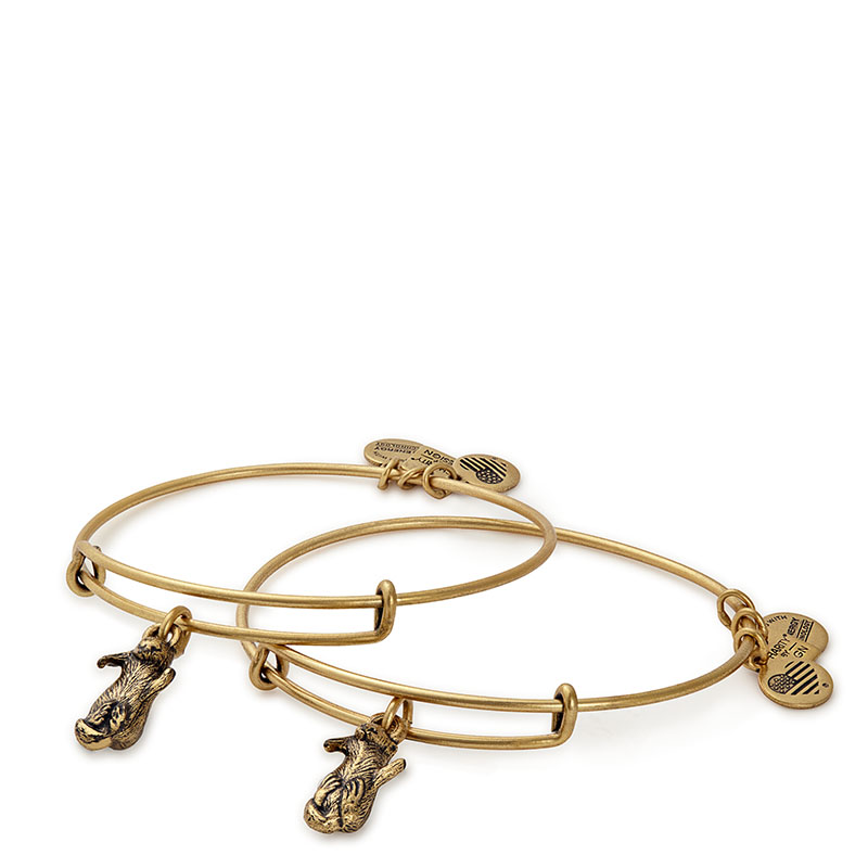 Alex and Ani Side By Side Otters (Set of Two) Charm Bangles | JDRF
