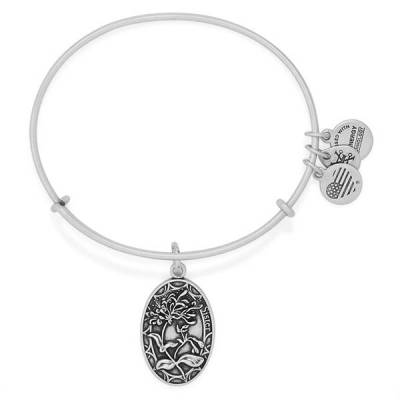 Sister Expandable Wire Bangle in Rafaelian Silver