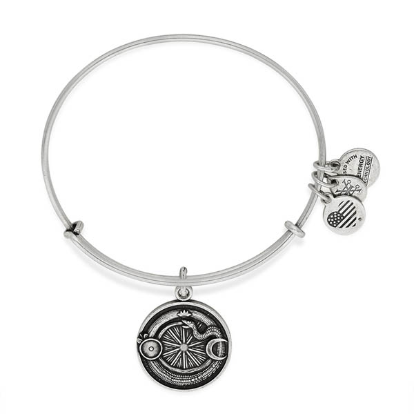 alex and ani retirement bracelet alex and ani ouroboros charm bangle the paper store 4567