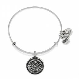 Alex and Ani Ouroboros Charm Bangle