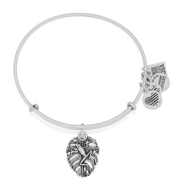 Alex and Ani Team USA Tree Frog Charm Bangle