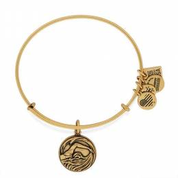 Alex and Ani Swimming Team USA Expandable Wire Bangle