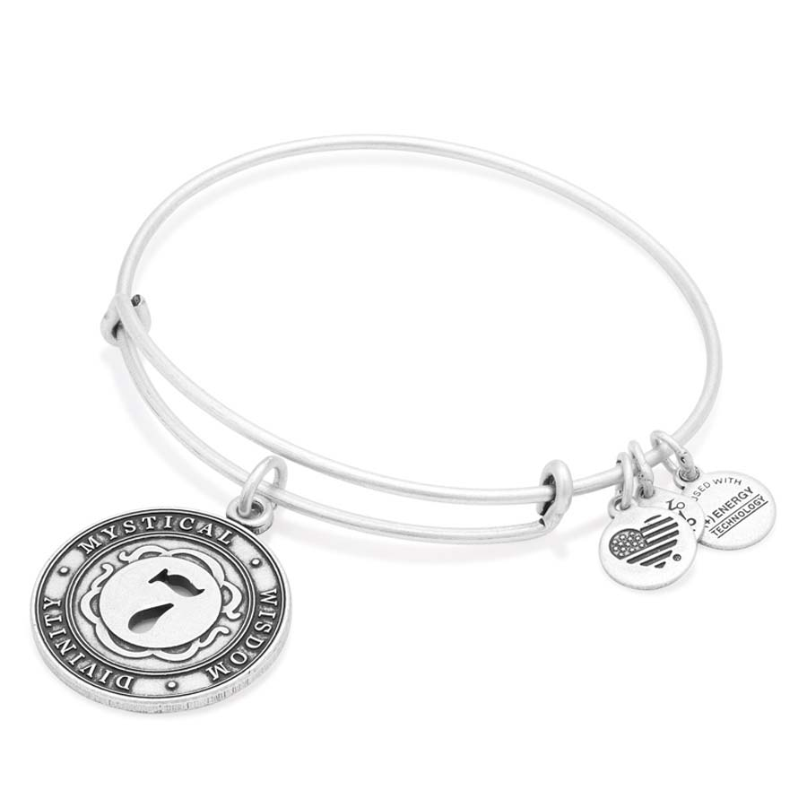 Alex and Ani Number Six Expandable Wire Bangle