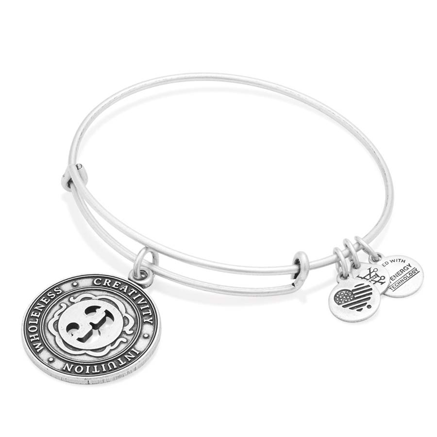 Alex and Ani Number Twenty-Two Expandable Wire Bangle