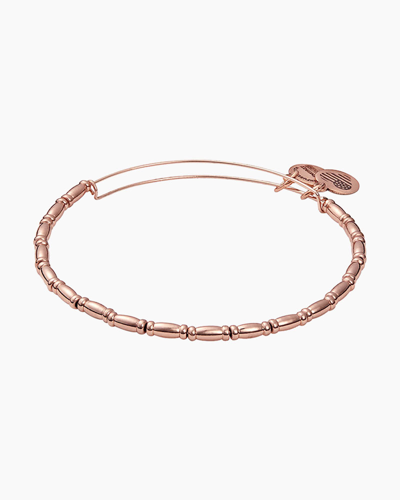 Alex and Ani Reed Expandable Wire Bangle