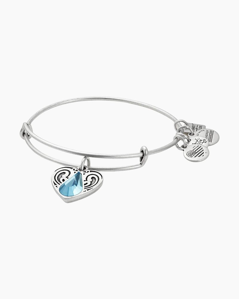 Alex and Ani Living Water Charm Bangle | Living Water International