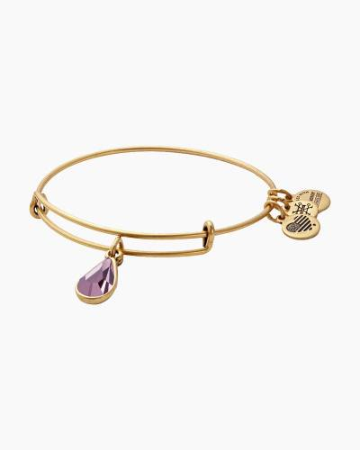 June Birth Month Charm Bangle With Swarovski Crystal