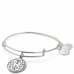 Alex and Ani Path of Life Color Infusion Charm Bangle