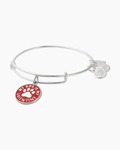 My Dog is My Valentine Charity By Design Bangle in Shiny Silver Finish