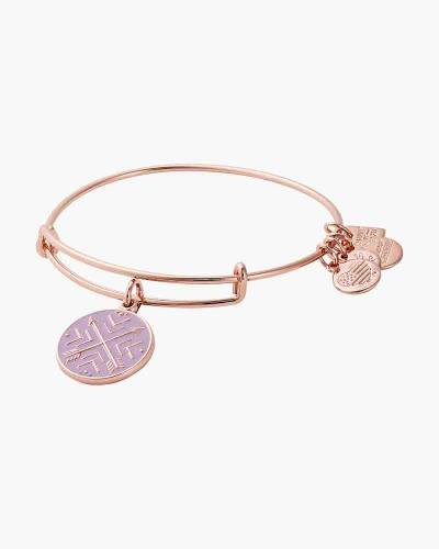 Arrows of Friendship Charm Bangle in Shiny Silver Finish