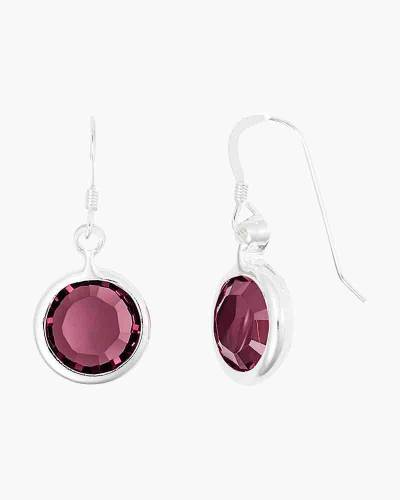 February Birthstone Drop Earrings in Shiny Silver Finish