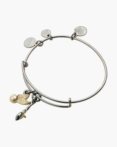 Harry Potter Quidditch Duo Two-Tone Charm Bangle in Midnight Silver