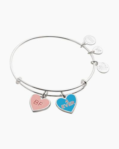 Color Infusion Best Friends Duo Charm Bangle in Shiny Silver Finish