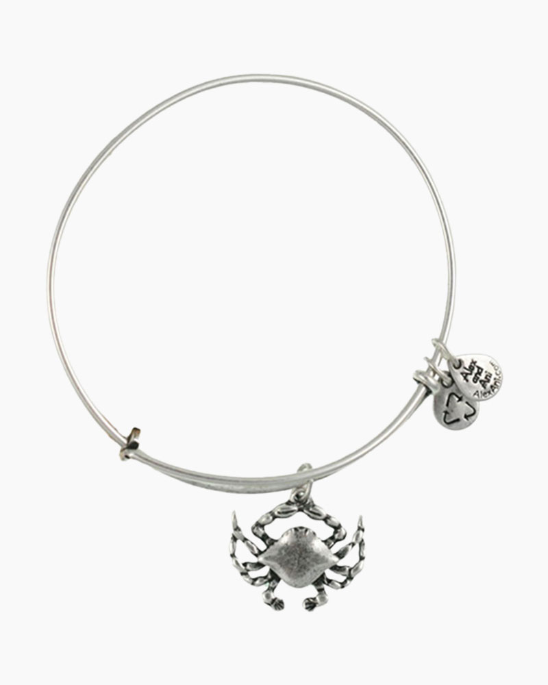 alex and ani retirement bracelet alex and ani crab charm bangle the paper store 4846