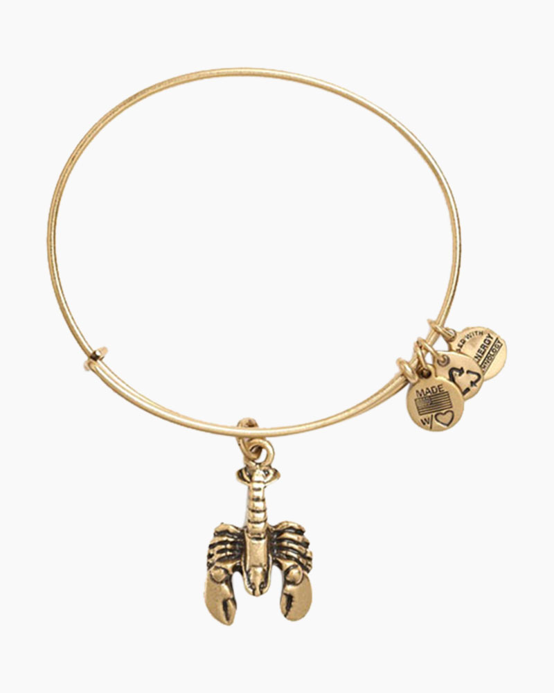 alex and ani lobster charm bangle the paper store