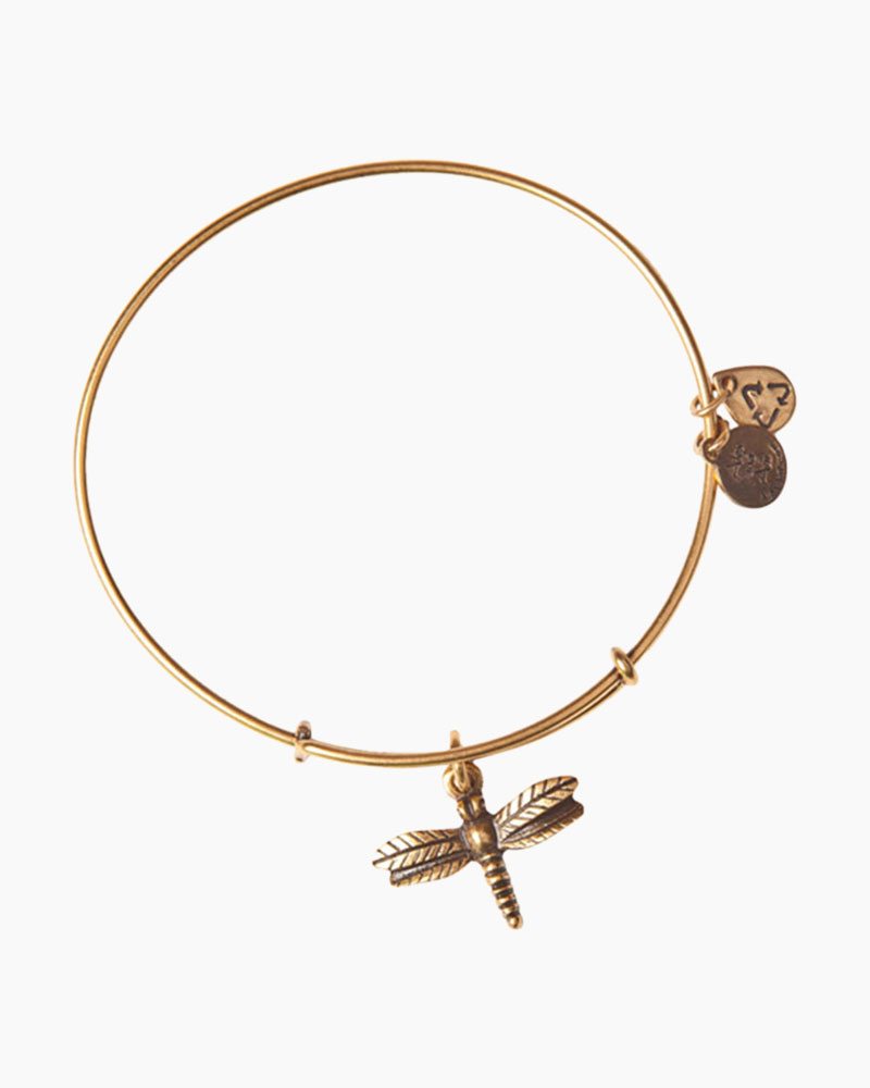 Alex and Ani Dragonfly Charm Bangle in Rafaelian Gold Finish