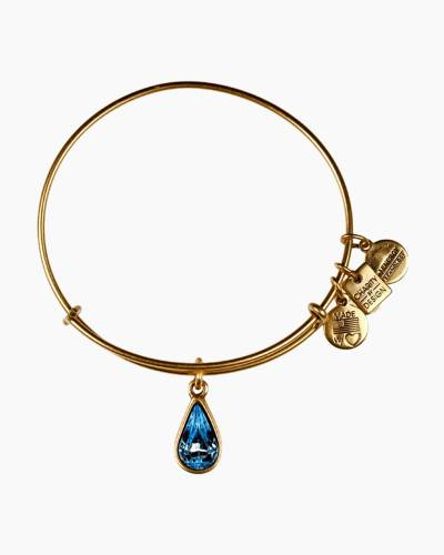 Living Water Charm Bangle | Living Water International