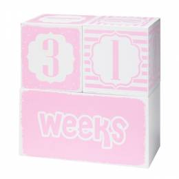 Adams & Co. Pink Baby Keepsake Blocks