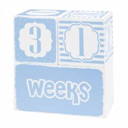 Adams & Co. Blue Baby Keepsake Blocks