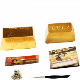 Discover with Dr. Cool Golden Nugget Dig Kit