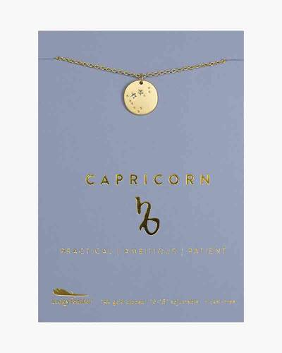 Capricorn Zodiac Sign Constellation Pendant Necklace