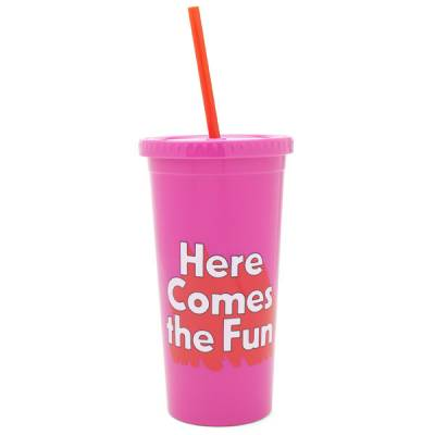 Here Comes the Fun Sip Sip Tumbler with Straw