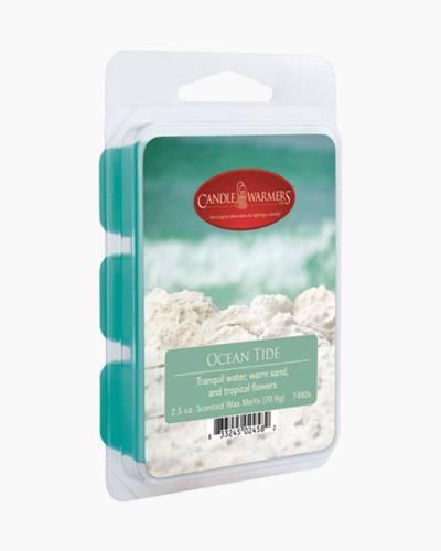 Ocean Tide 2.5 oz Wax Melts
